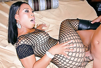 Myeshia Nicole spreads her sexy legs in black fishnet pantyhose and gets her hungry muff drilled by big stiff dong